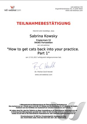 How to get cats back into your practice. Part 1